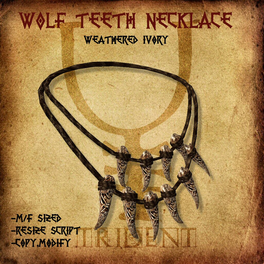 Wolf Teeth Necklace Pendant T R I D E N T Jewelry